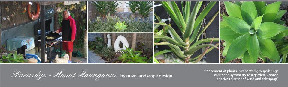 Nuvo houses apartments partridge for Landscape jobs nz